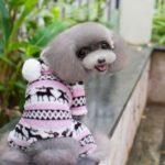Deer Pattern Coral Velvet Soft Winter Coat Dog Jacket Pet Dog Vest Coat – Pink/Size: S