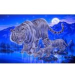 5D Diamond Painting Kit Embroidery Cross Stitch Rhinestone Canvas Wall Decor – Style 1