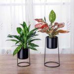 With High Framework Stands Desktop Decoration–Black Set of 2 Metal Desktop Planter Succulent Cactus Air Plant Flower Pots Holder