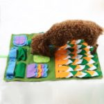 Pet Splicing Flowers Fun Training Interactive Sniffing Foraging Pad for Dog